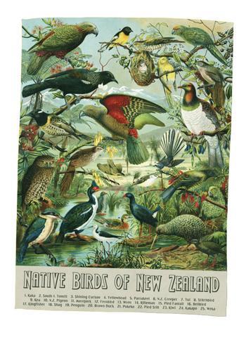 nz birds teatowel, teatowels kiwiana,